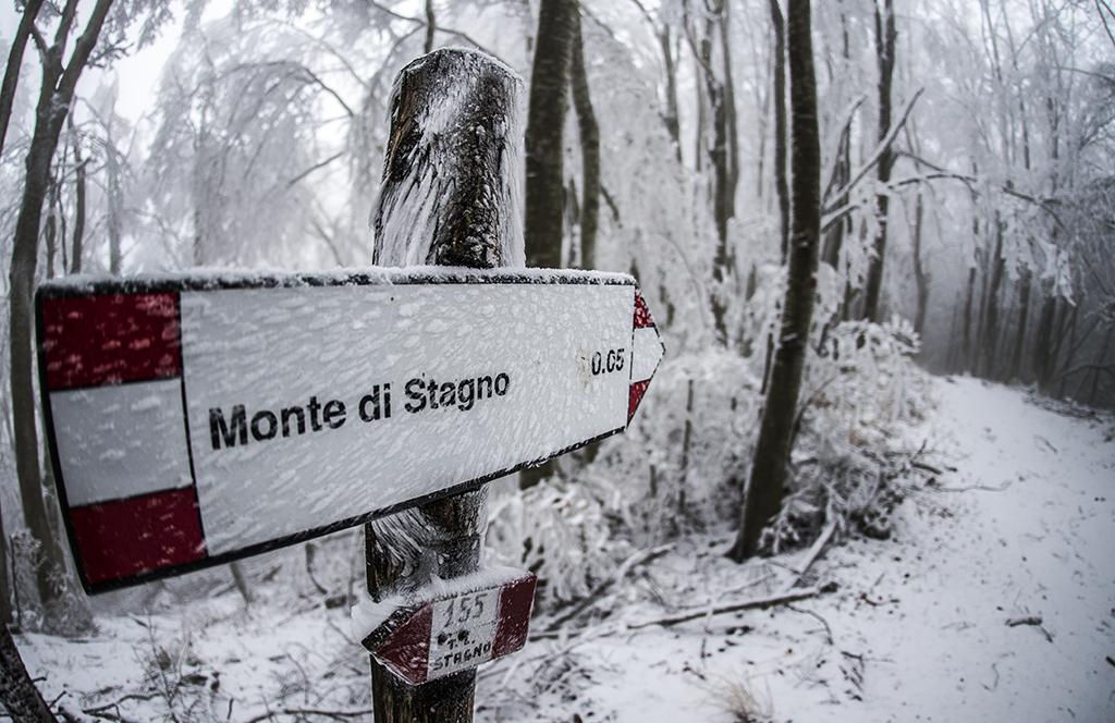 Monte di Stagno