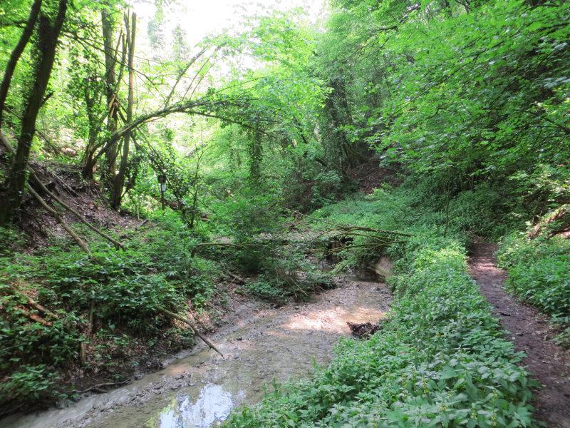 Rio Ramato