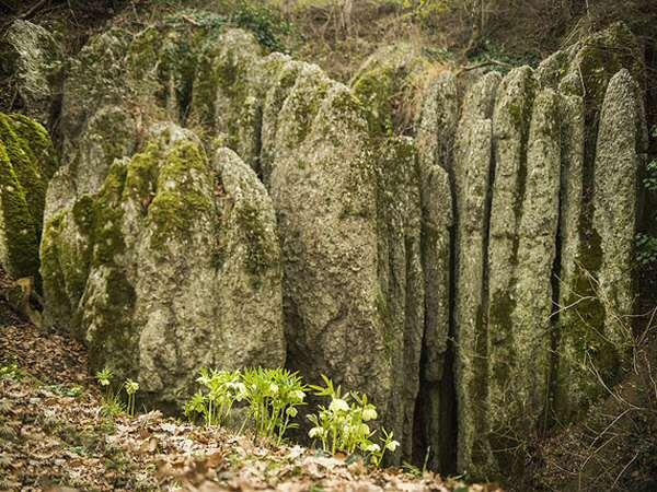 Parco dei Gessi Bolognesi e dei Calanchi dell'Abbadessa