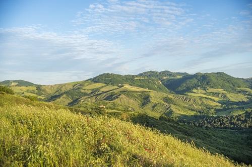 Landart Al  Tramonto -  In Cammino Tra Giardini E Orti Cittadini