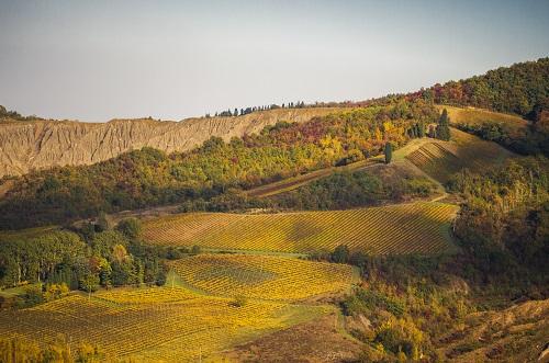 Land Art Al Tramonto, In Cammino Tra Orti E Parchi