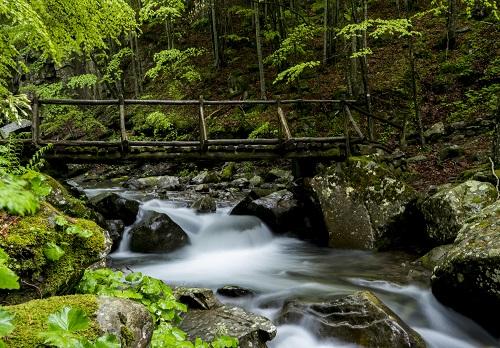 Camminata Serale Alle Cascate Del Dardagna